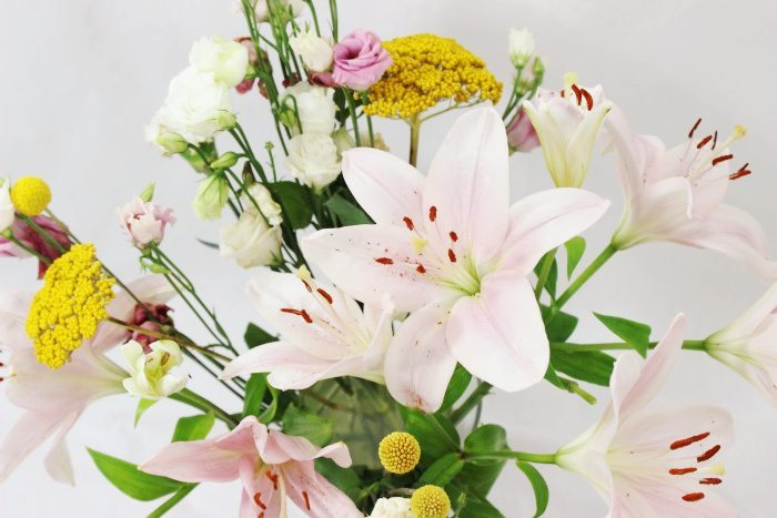 Abo für Blumen